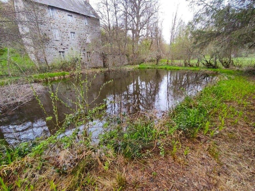 Belle propriété (ancien moulin) sur 1ha de terrain