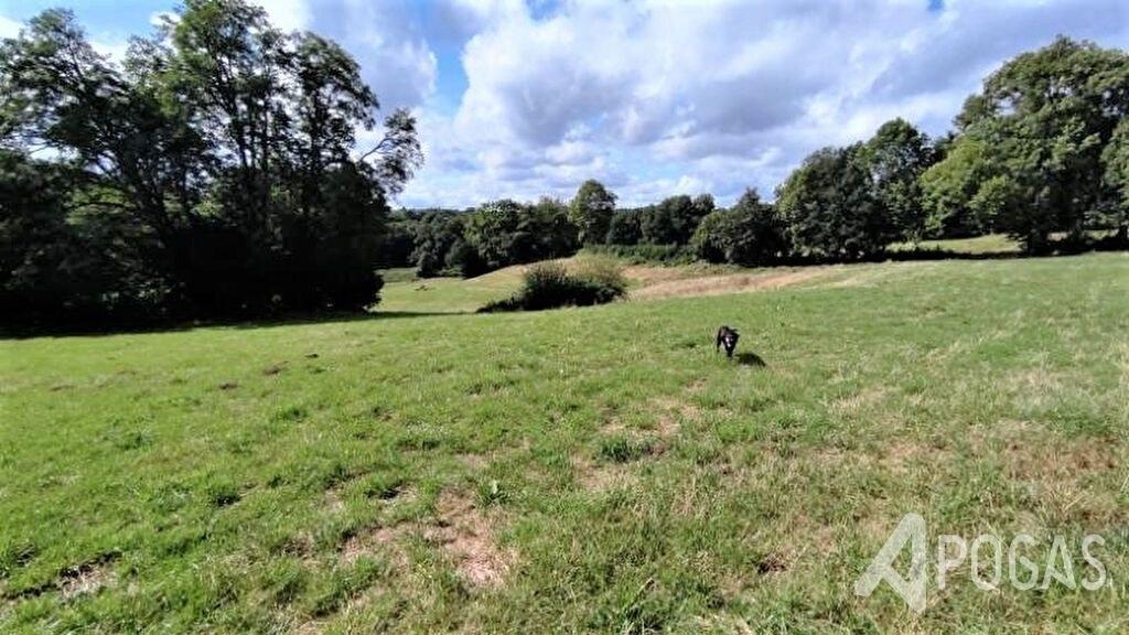 Maison de campagne avec terrain 1.5 ha
