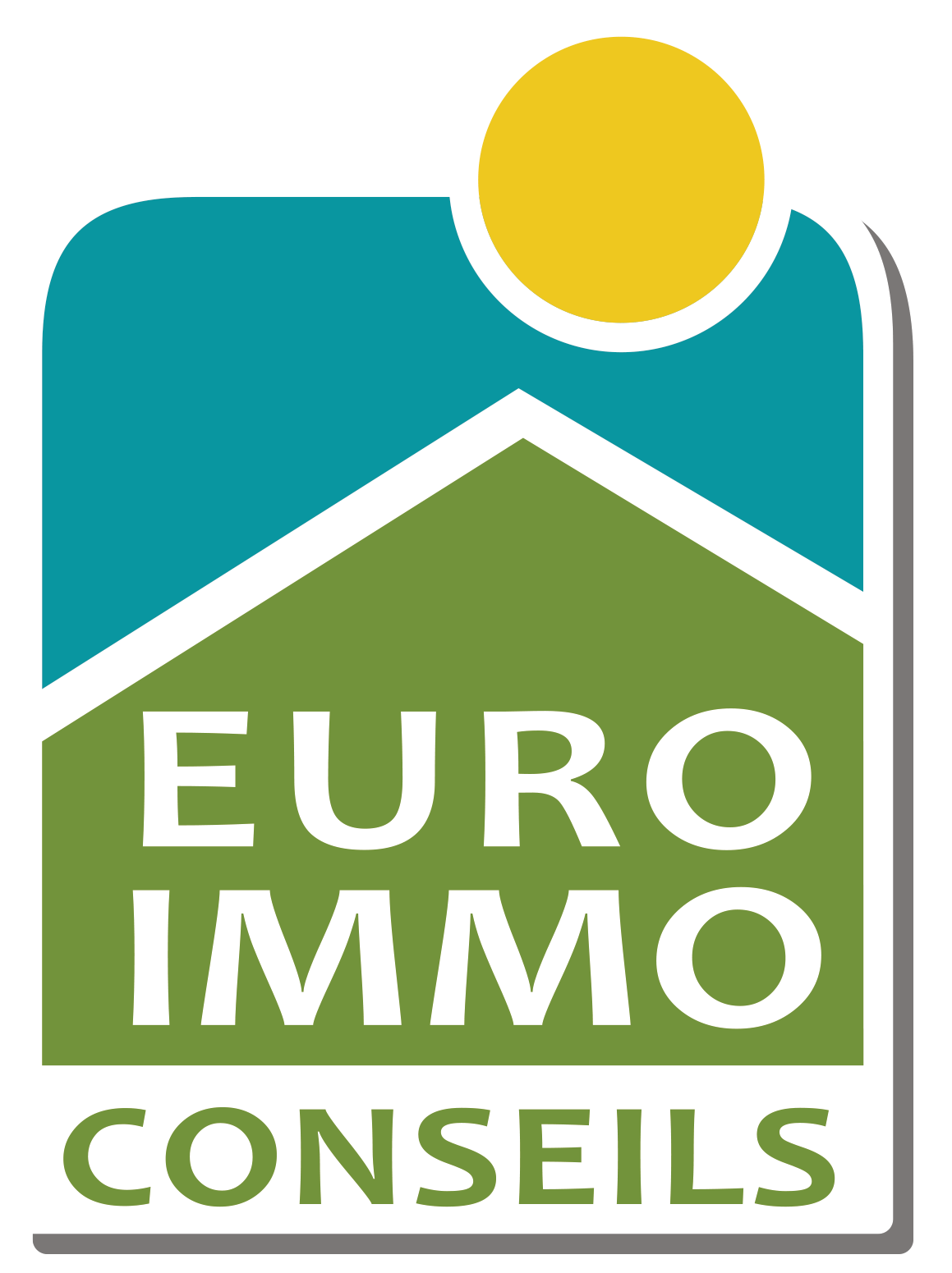 Euro immo conseils epinal epinal 88000 annonces for Conseil immo