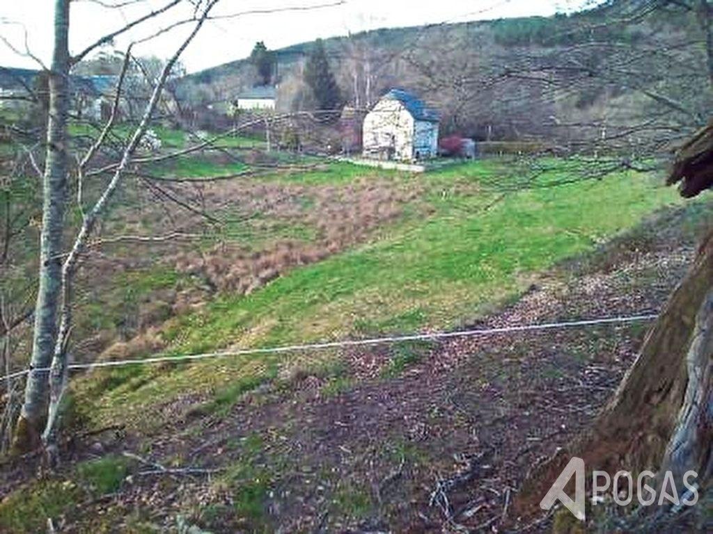 Maison Chaumeil 5 pièce(s) 115 m2 sur un terrain d'environ 9500m2