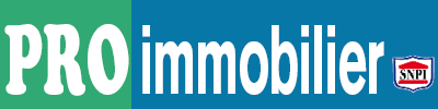 PRO IMMOBILIER