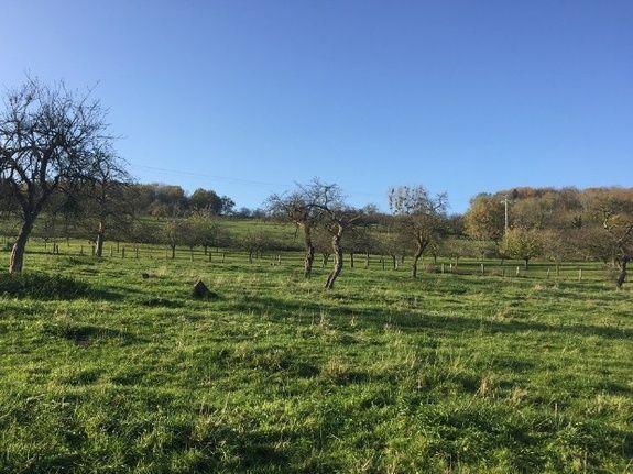 terrains-a-vendre-vosges-charmes-soucourt-terrain-viabilisé-pierres-et-territoires-de-france-champagne-ardenne-lorraine